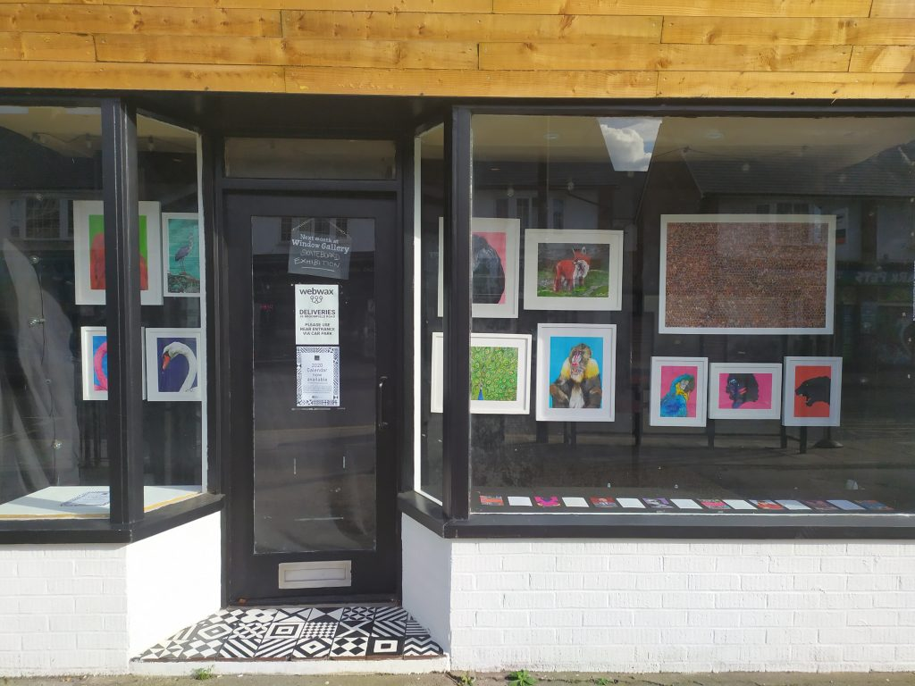 Full view of Matthew Brazier Exhibition at the Window Gallery