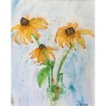 Echinacea Lynn Excell